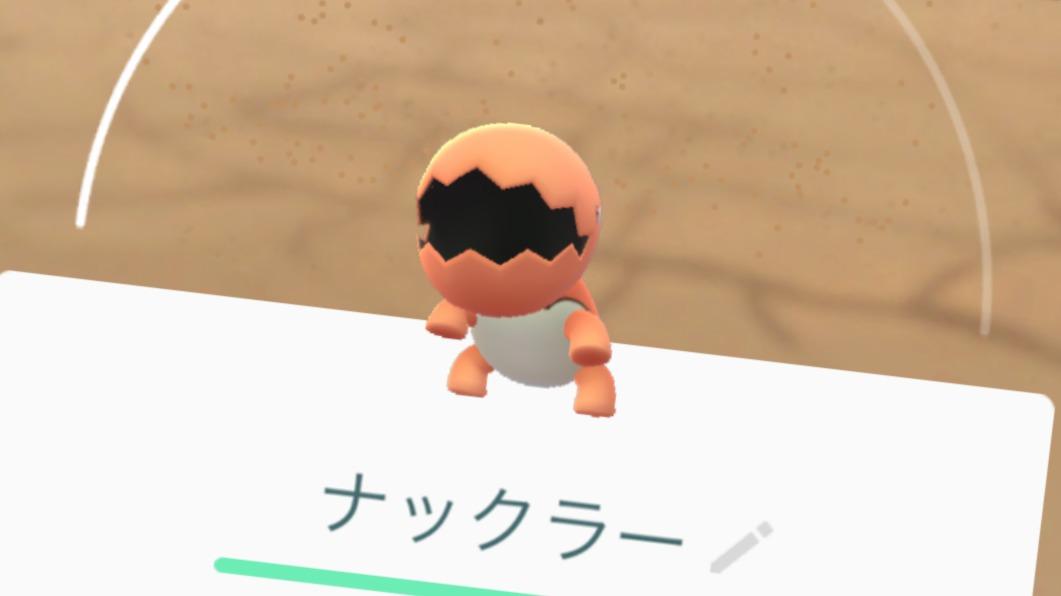 ナックラー ポケモン 色 違い go